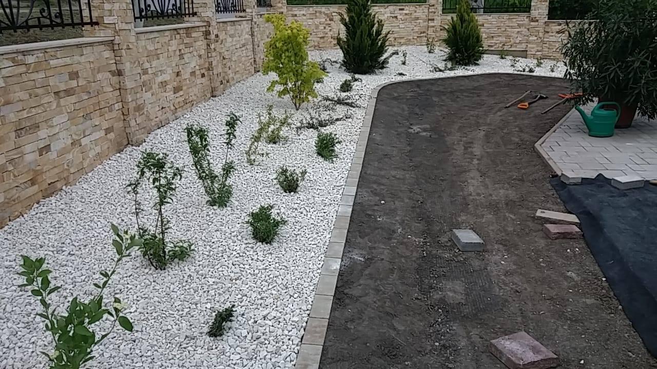Növénytelepítések